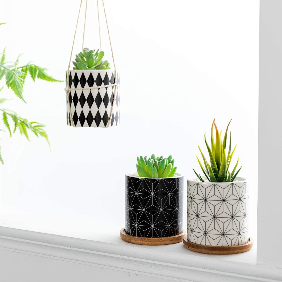 Dsben 3.5 Inch Succulent Plant Pots, Small Modern Pattern Flower Ceramic Planter Indoor with Bamboo Tray for Cactus, Herbs, Home, Set of 3