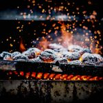 The Best Types of Charcoal for Your Grill