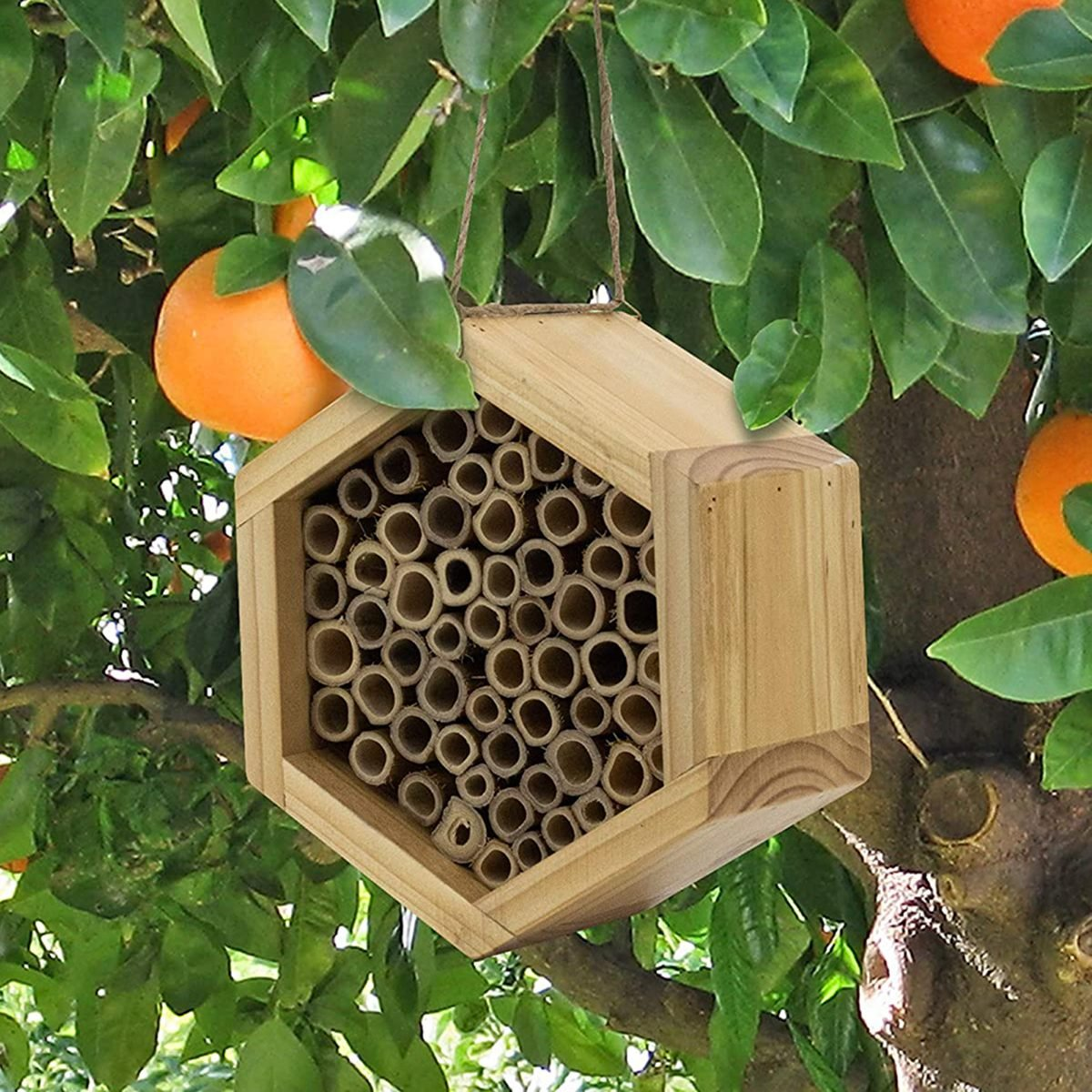 Mason Bee House - Handmade Natural Bamboo Bee Hive - Attracts Peaceful Bee Pollinators to Enhance Your Garden's Productivity