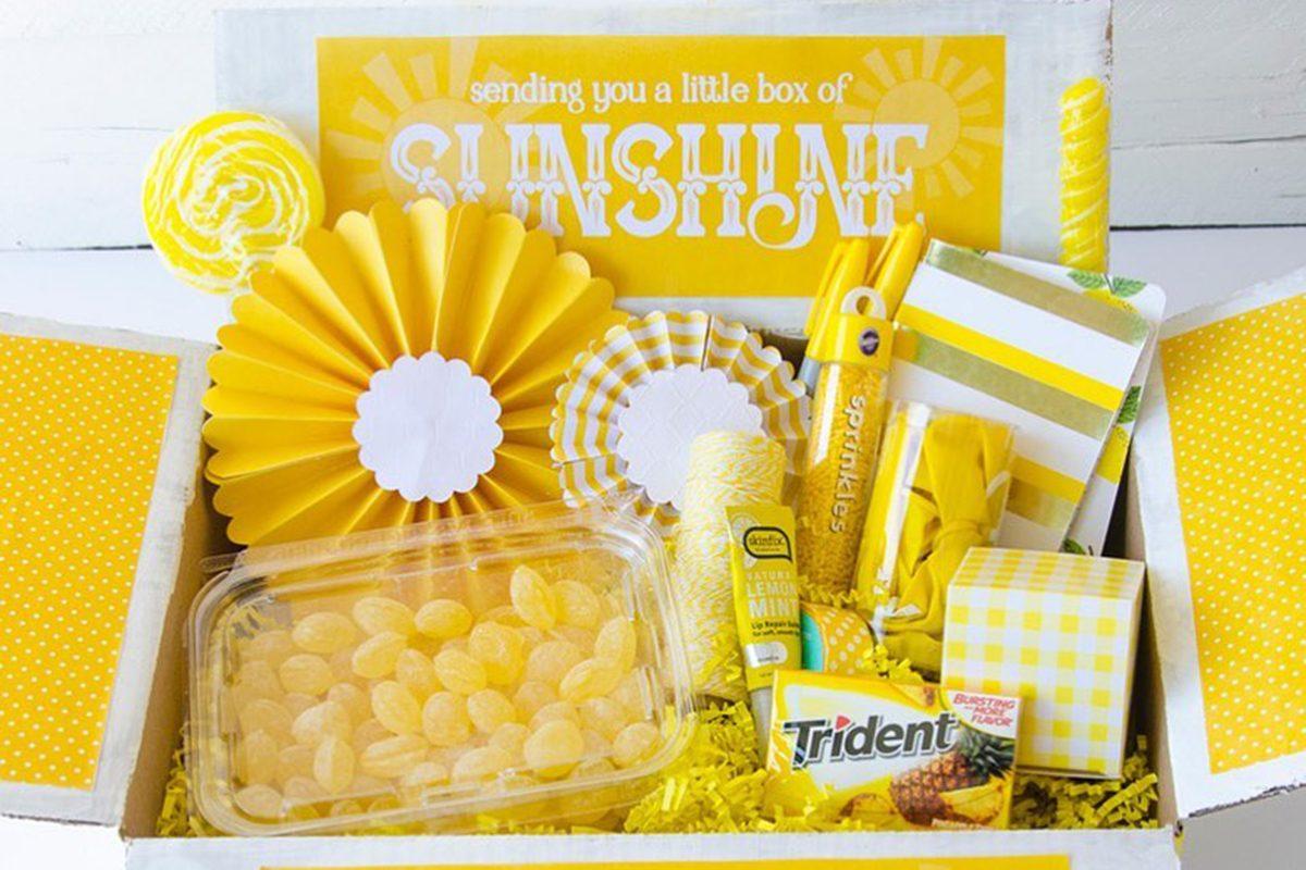 sunshine box subscription