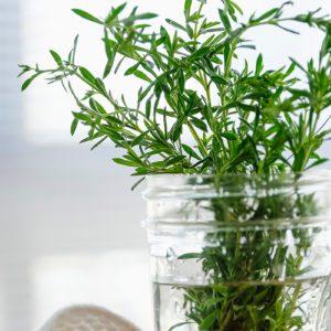 How Long Do Fresh Herbs Last in the Fridge?