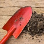 What Every Gardener Should Know About Topsoil