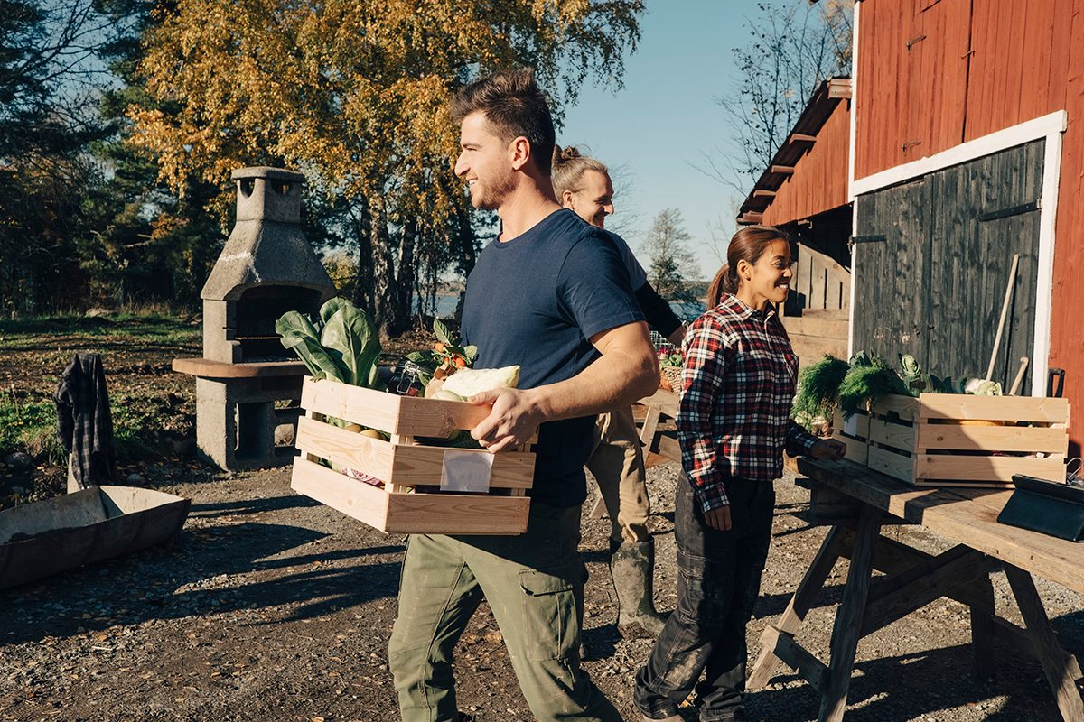 Mid adult man carrying crate full of vegetables at farmers market