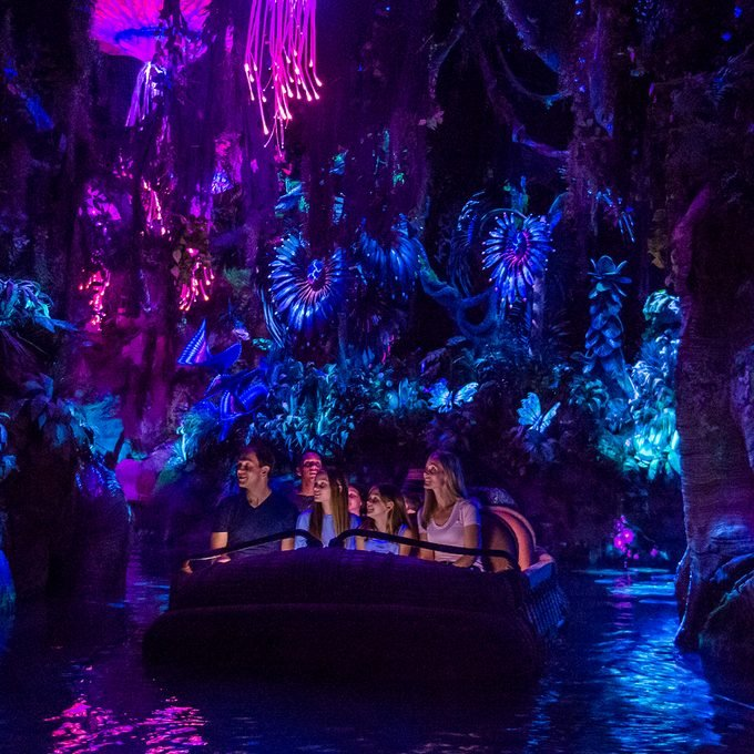 LAKE BUENA VISTA, FL - MAY 24: In this handout photo provided by Disney Resorts, a view of the new Pandora: World of Avatar attraction inside Disneys Animal Kingdom during the dedication ceremony on May 24, 2017 at Disneys Animal Kingdom inside the Walt Disney World Resort in Lake Buena Vista, Florida. The World of Avatar opens on May 27, 2017. (Photo by Steven Diaz/Disney Resorts via Getty Images)