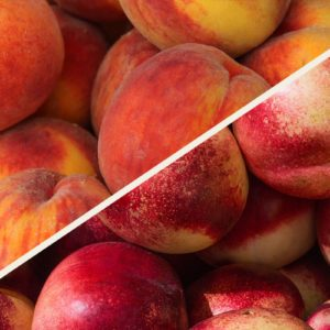 Nectarines vs. Peaches: What's the Difference?