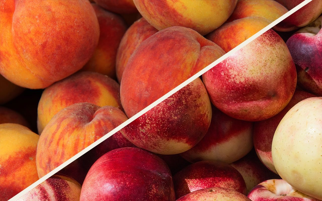 Nectarine vs Peach