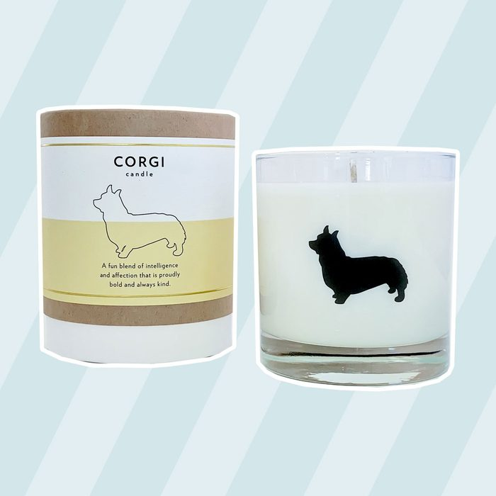 Scripted Fragrance Pet Collection Glass Candle