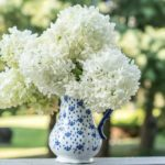 How to Easily Revive the Wilting Hydrangeas in Your Kitchen Bouquet