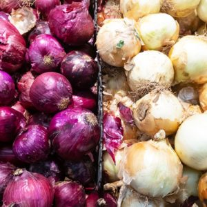 Red, Yellow and White Onions Are Recalled for Salmonella Risk