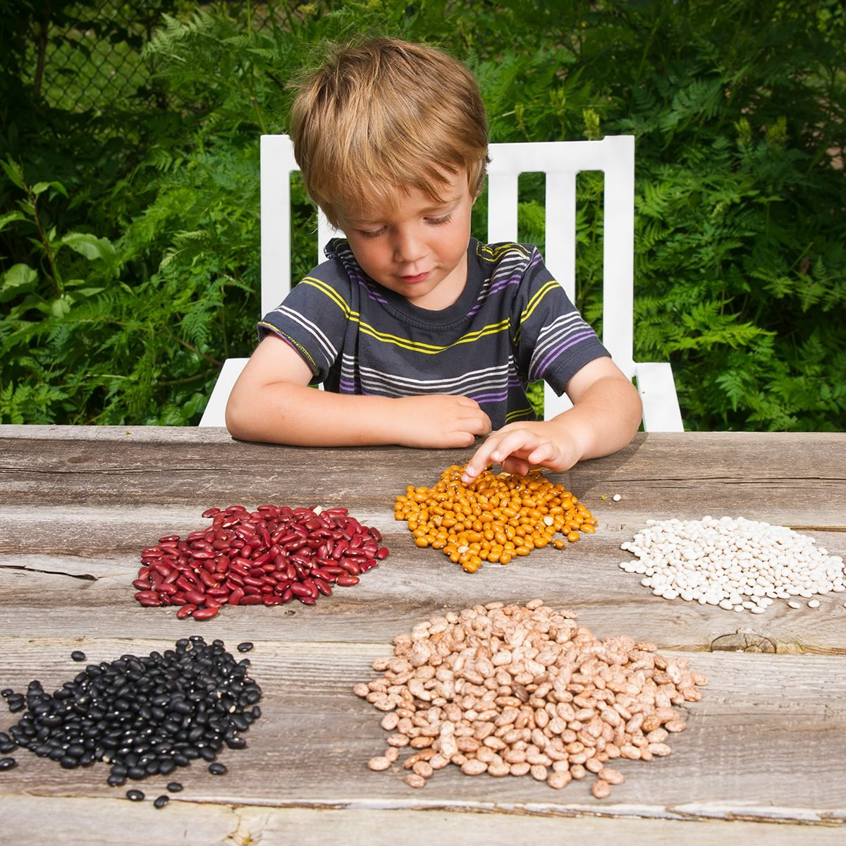 A little boy counting lots of beans.Please browse my: