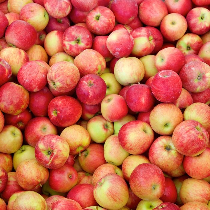 Jonagold apples background at apple harvest. A cross between a golden delicious an jonathan apple