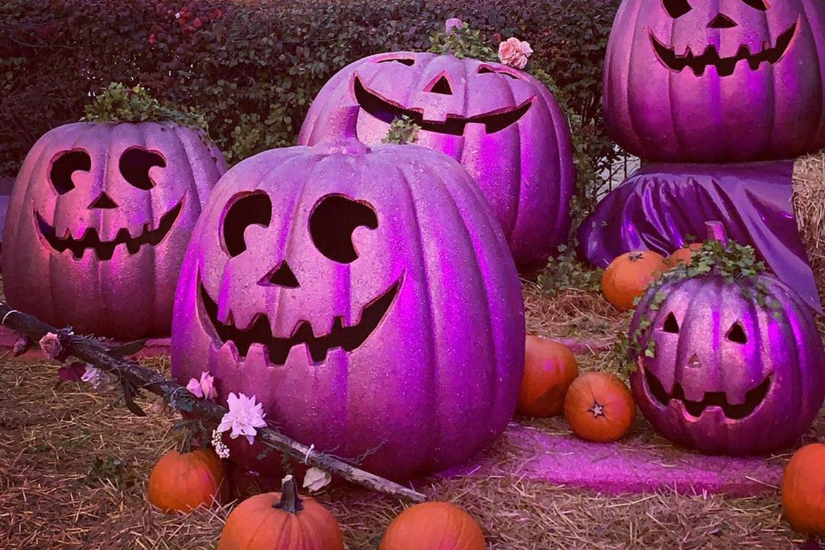 Taste Of Home Halloween 2020 Here's Why People Are Putting Out PURPLE Pumpkins This Halloween