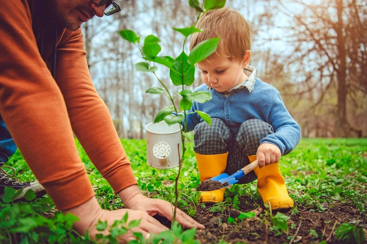 Little boy and his father gardening