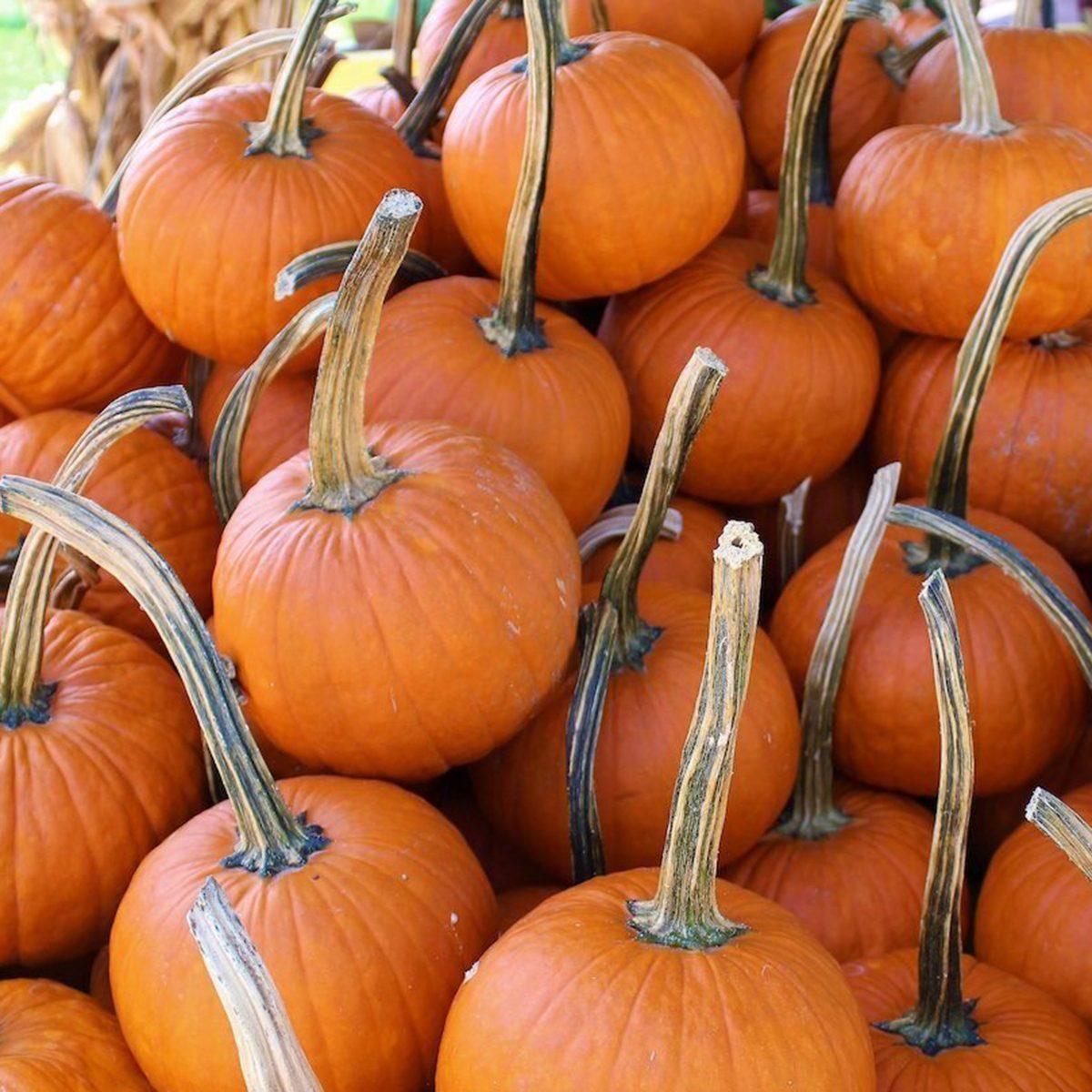 Mound of pumpkins