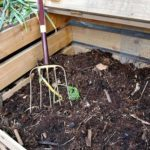 10 Tips for Composting Your Leaves This Fall