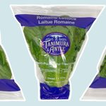 Romaine Lettuce Is Recalled in 19 States Due to E. Coli Contamination
