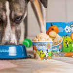 Ben & Jerry's Is Now Making Ice Cream for Dogs, and It's Pretty Paw-some