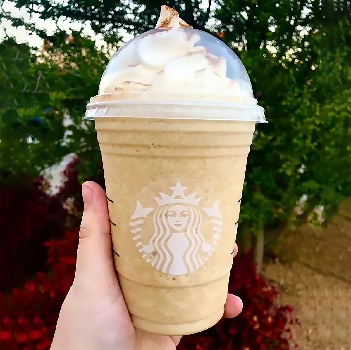 Starbucks French Toast Frappuccino from the secret menu