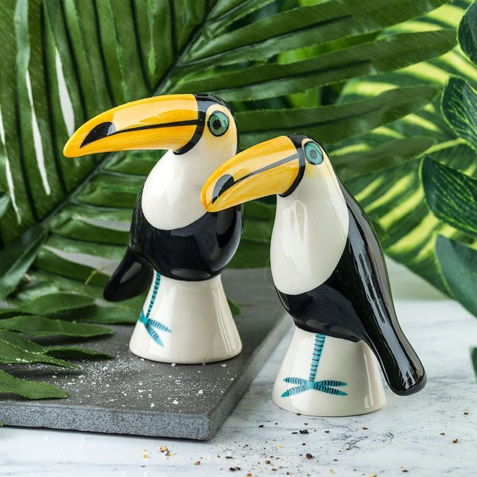 tropical kitchen decor Toucan Salt And Pepper Shakers