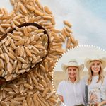 How to Use Kamut, an Ancient Whole Grain