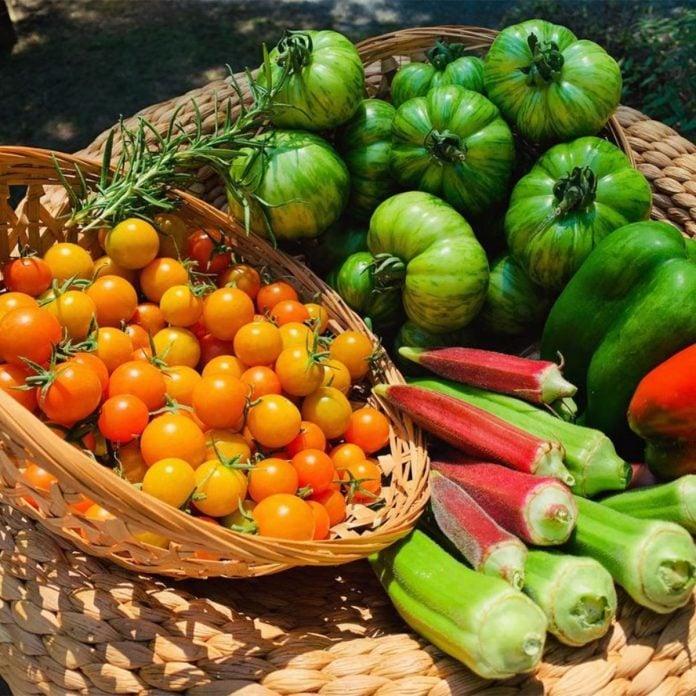 Baskets Of Veggies vegetable gardening for beginners