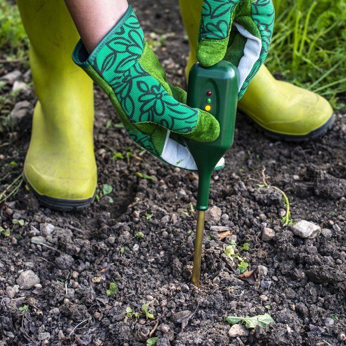 vegetable gardening for beginners Nutrients Soil Meter. Measure Soil For Nitrogen Content With Digital Device. Woman Farmer In A Garden.