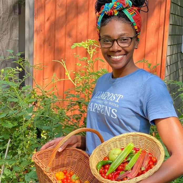 The Mocha Gardener vegetable gardening for beginners