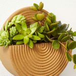 Wall Mounted Stoneware Planter Hero