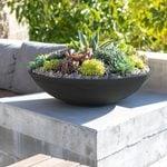 16 Succulent Pots Our Stylists Love