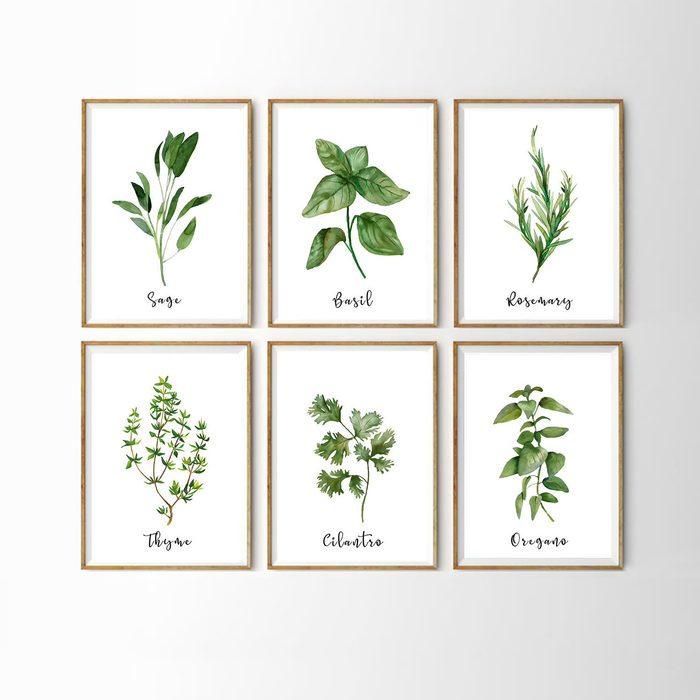 Watercolor Herb Set Wall Signs